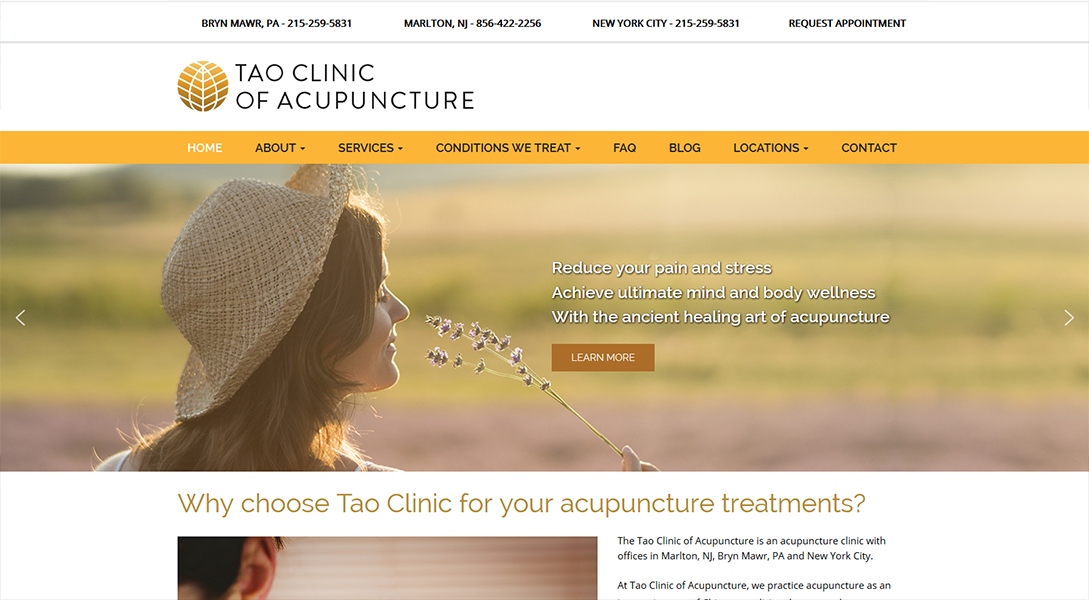 TAO Institute of Acupuncture